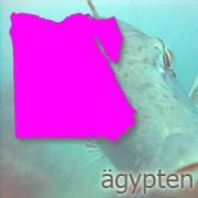 aegypten_wasser